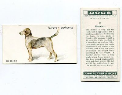 1931 Players A Series of Dogs Cigarette Cards