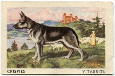 1958 Sanitarium trade card Tailwaggers Series of 64