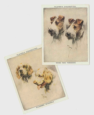 1939 PLAYER cigarette card DOGS A SERIES OF 25