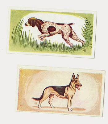 1958 CADET SWEETS trade card DOGS 1st SERIES