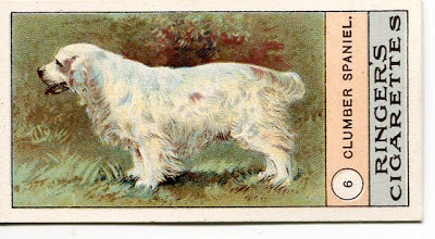 1908 Edwards Ringer Biggs Dogs Series Cigarette Cards