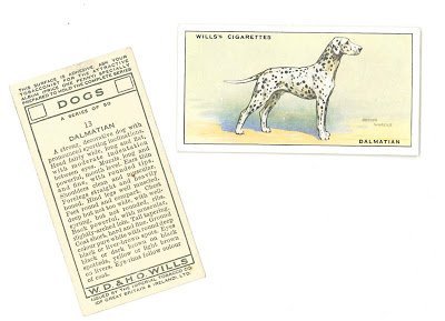 1937 Wills cigarette cards Dogs